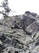 Rock Climbing Photo: Moving right from the holly tree P2 .Climber  Gene...