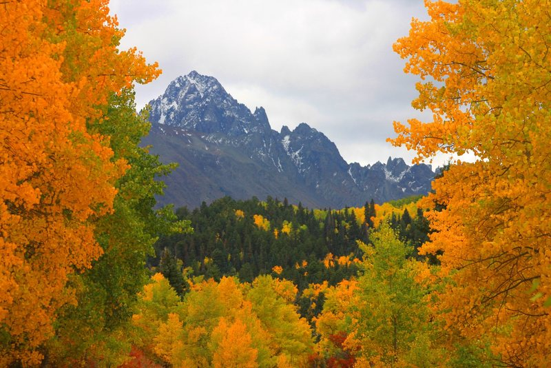 Fall colors on the Mt. Sneffels approach.