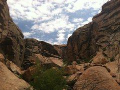 Rock Climbing Photo: Wasp Canyon.