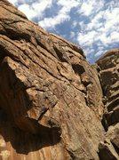 Rock Climbing Photo: Wasp Wall.