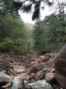 Rock Climbing Photo: A better photo of the small drainage from the 2nd ...