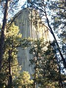Rock Climbing Photo: Devil's Tower