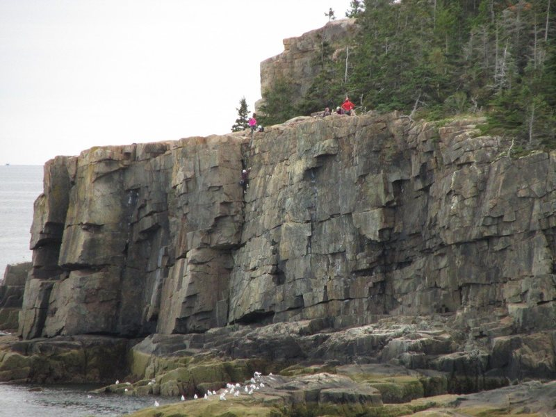 Rock Climbing Photo: Climbers in Acadia NP