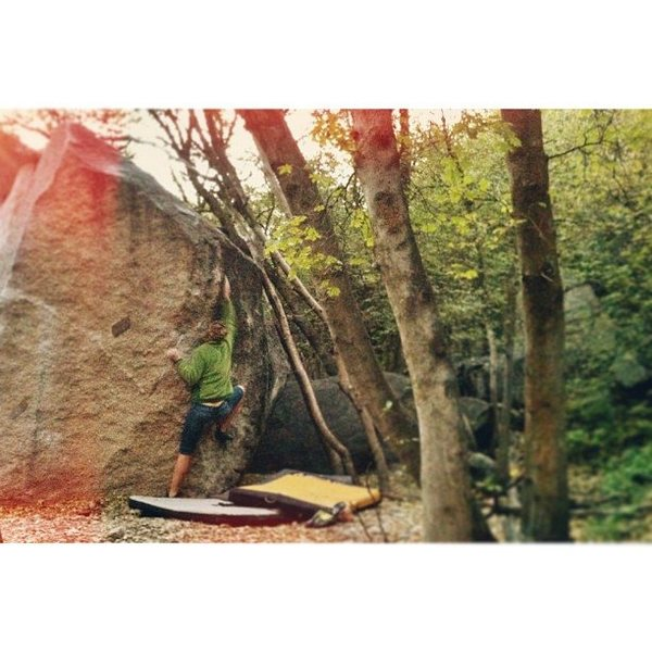 Rock Climbing Photo: Jacey working on Fungus