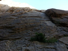 Rock Climbing Photo: First bolt of Pony Express.  We had a 70 meter rop...