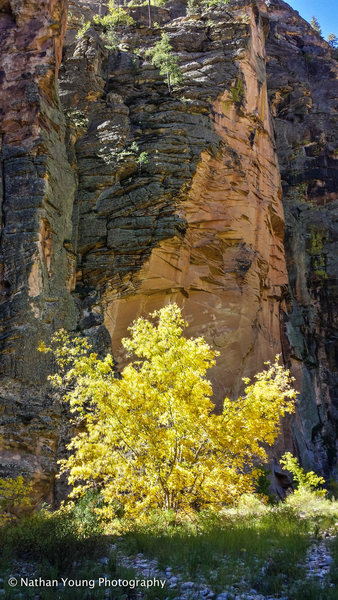 Rock Climbing Photo: It's really stunning down there when the light pla...