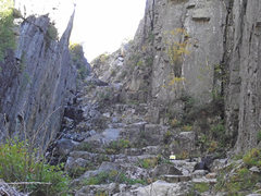 Rock Climbing Photo: Another view looking up ... lots of vegetation in ...