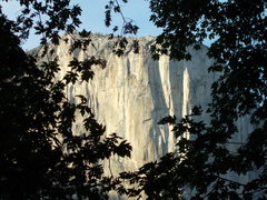 Rock Climbing Photo: El Capitan as seen from Middle Cathedral.