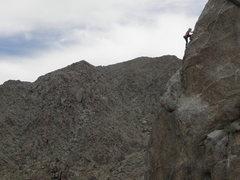 Rock Climbing Photo: Aubrey Adams on the arete of I Love Animals, They ...