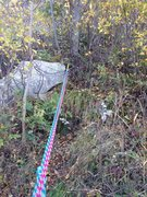Rock Climbing Photo: Belaying tree ledge at top of p4 of the fm. Extend...