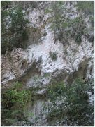 Rock Climbing Photo: Limestone wall (1)