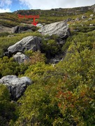 Rock Climbing Photo: The Asteroid is left and up from these lower bould...