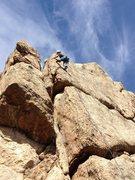 Rock Climbing Photo: Paper Tiger.