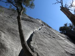 Rock Climbing Photo: Lunatic Fringe, from the base