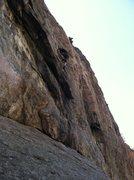 Rock Climbing Photo: Steve Thomas leading Herbal Essence.