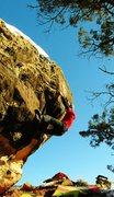 Rock Climbing Photo: Working the crimp rail on Baby Pumpkins.