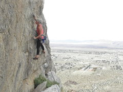 Rock Climbing Photo: Aubrey Adams on Cat, The Other White Meat..