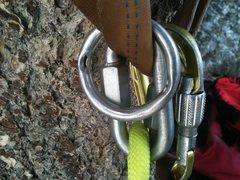 Rock Climbing Photo: worn out rap ring