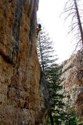 Rock Climbing Photo: just below the chains