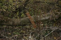 Rock Climbing Photo: Sign.