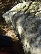 Dinosaur boulder. <br />