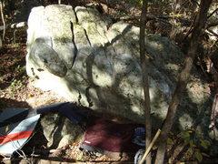 Dinosaur boulder