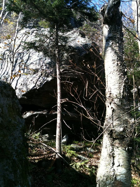 South side of Tourist Escape Boulder as seen from Mouse Trap Boulder.  Climbs are on other side of boulder.