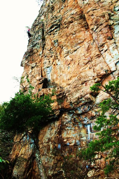 Rock Climbing Photo: Davids Castle Wall  Rediscovery (5.8) trad  Crowde...