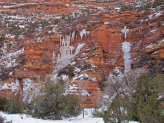 Rock Climbing Photo: Ice in Arch Canyon.  (Somebody needs to climb this...