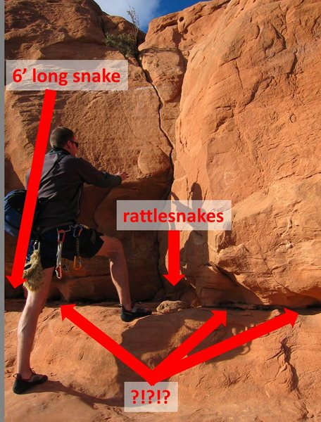 beward of snakes at the start of looking glass rock!