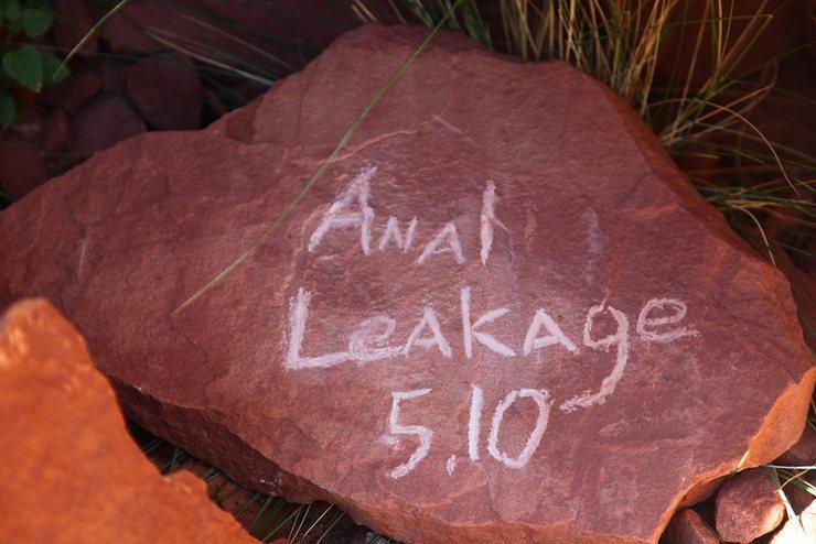 Anal Leakage headstone.