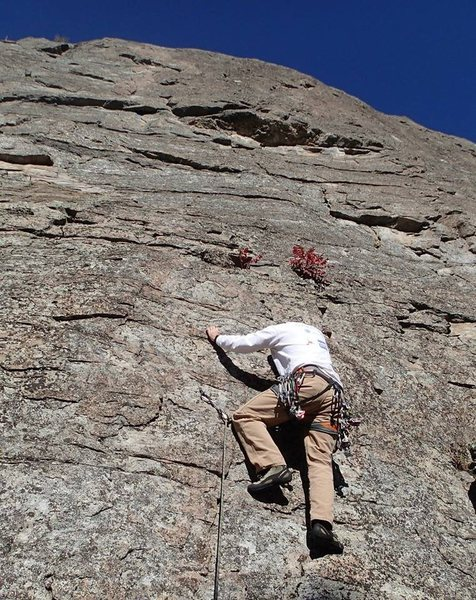 "Mark beginning ""Terrapin Station"" (5.9**) at Turtle Island"