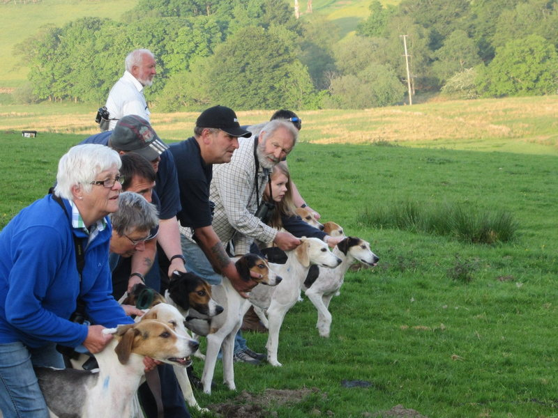 Keen Lasses Chaps and dogs. Denis 6th from left facing camera did many fine first ascents in the Lake District.  This race his hound won