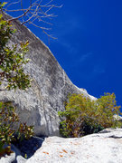 Rock Climbing Photo: This is what the crack looks like from the first g...