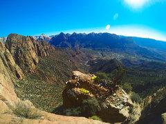 Rock Climbing Photo: Jacky treehorn bivy.