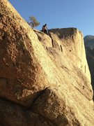 Rock Climbing Photo: Colby on top of The Thumb