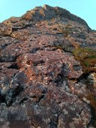 Rock Climbing Photo: Straight up here for Alpine 1p, Anchors visible ab...