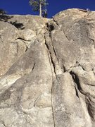 Rock Climbing Photo: This is what happens when JTNP is shutdown and we ...