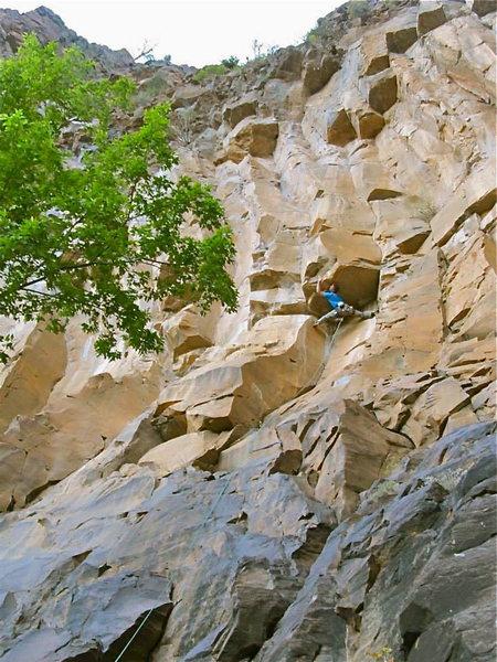 Rock Climbing Photo: Low crux