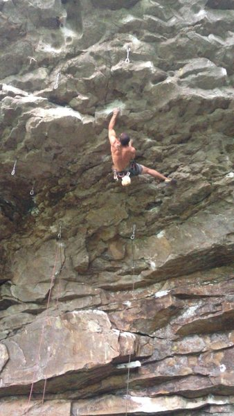 sticking the crux on silverback