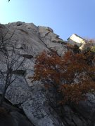 Rock Climbing Photo: The obvious left facing crack line on the right si...