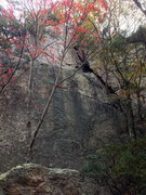 Rock Climbing Photo: Thumbthing Else is lighter face above the ledge. C...