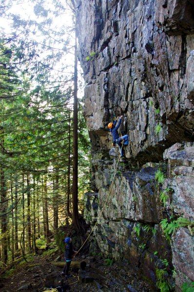 Rock Climbing Photo: Jeff leading Iguanarama