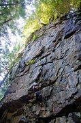 Rock Climbing Photo: Jessi on Iguanarama