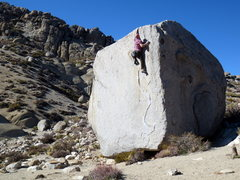 Rock Climbing Photo: Sweet problem.  Photo by Kevin Daniels.