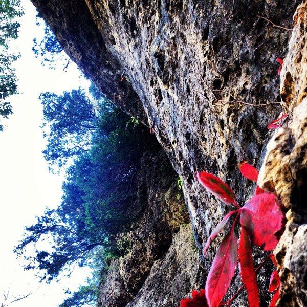 Rock Climbing Photo: Photo courtesy of Dave Patton