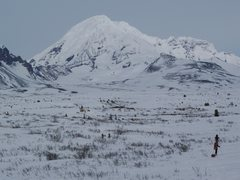 Rock Climbing Photo: The approach through the tundra and grizz country....