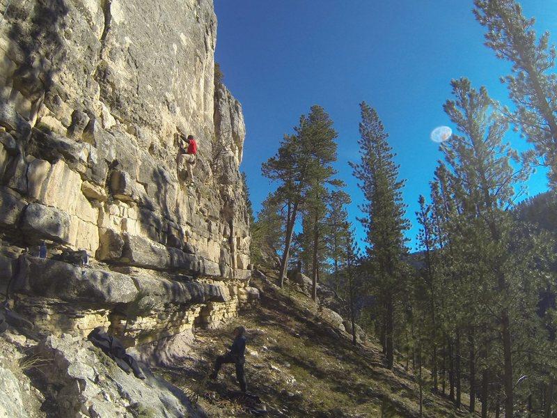 Rock Climbing Photo: Baby Toes, 5.11b