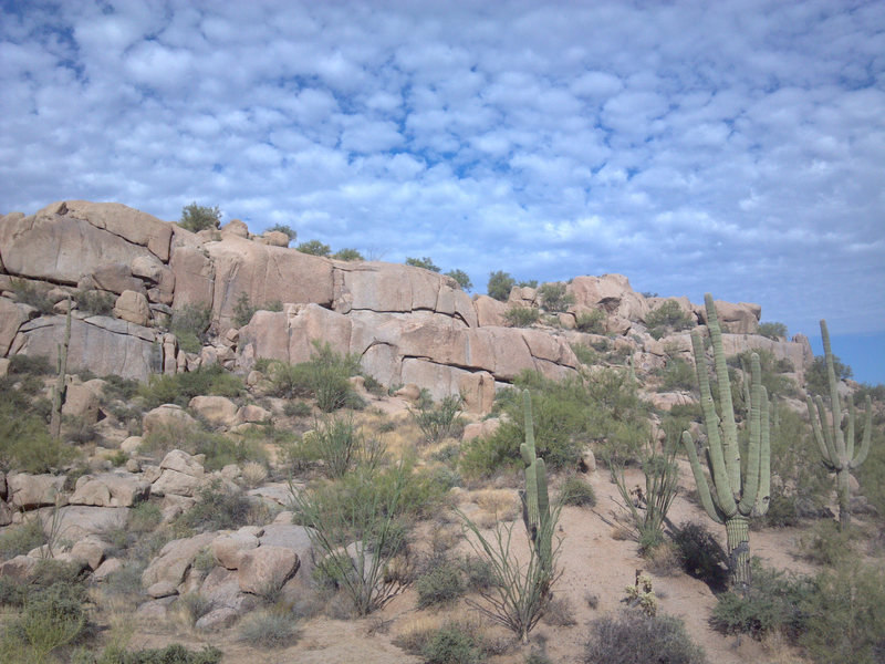 Rock Climbing Photo: View Northwest to the Cactus Flower Wall. Banana C...