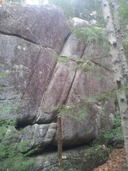 Rock Climbing Photo: Twin finger cracks, nice height too.
